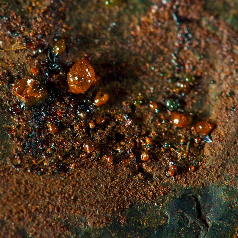 Jernklorid dråber på meteorittens overflade