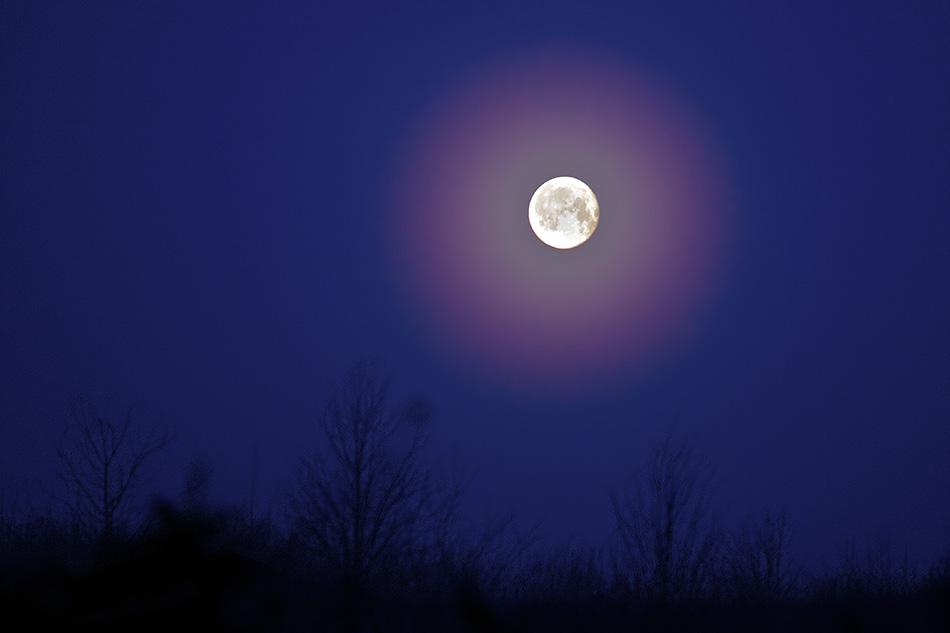 Måne aureole. Lysspredning i morgentågens små vanddråber.